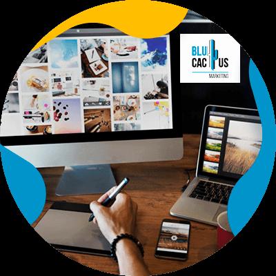 BluCactus - benefits of hiring an agency