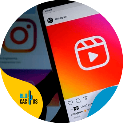 BluCactus - Instagram Reels vs TikTok - cellphone with an open app