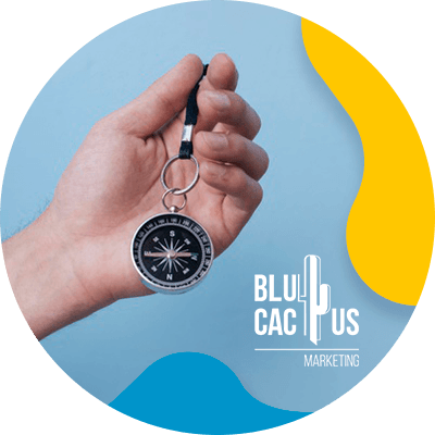BluCactus - elements of a brand