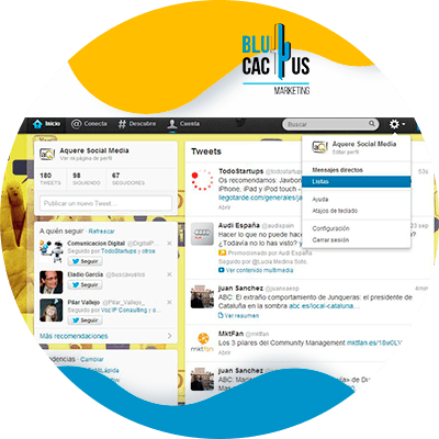 BluCactus -create list in twitter
