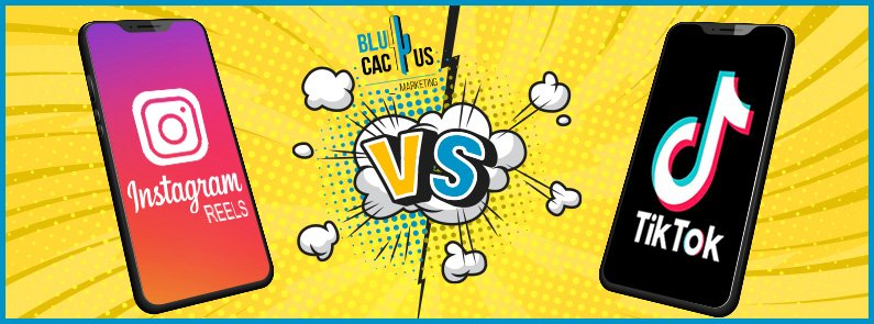 BluCactus - Instagram Reels vs TikTok - titulo