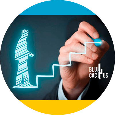 BluCactus - keys of sucess