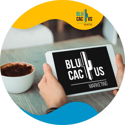 BluCactus - How much does a digital menu cost? - person using her ipad for work