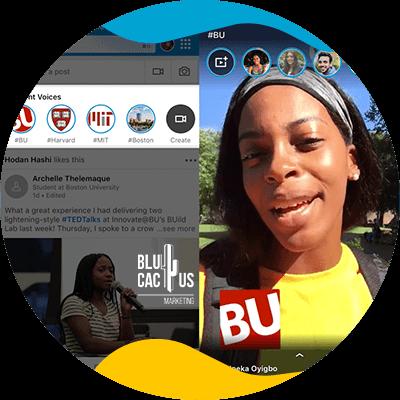 BluCactus - innovation
