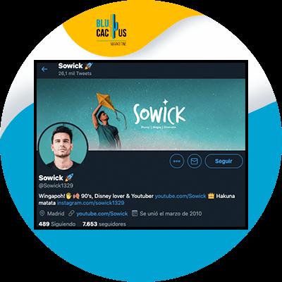 BluCactus - optimize your profile