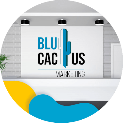 BluCactus - product presentation