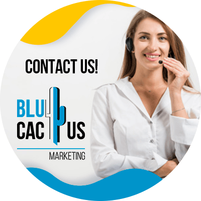 BluCactus - How to increase your twitter followers? - person working professionally with twitter