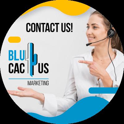 BluCactus - best marketing campaigns - cotact us
