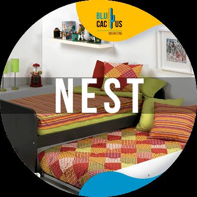 BluCactus - best marketing campaigns - nest