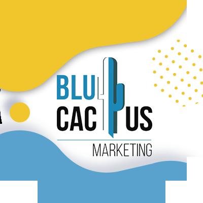 BluCactus - corporate colors