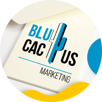 BluCactus - What is a brand - branding