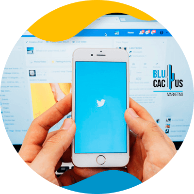 BluCactus - How to increase your twitter followers? - cellphone with a social media app open