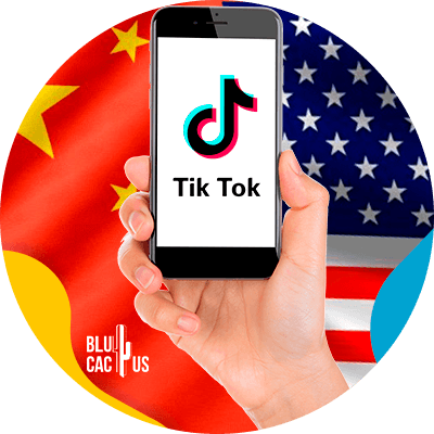 BluCactus - What will happen to TikTok? - person holding a phone