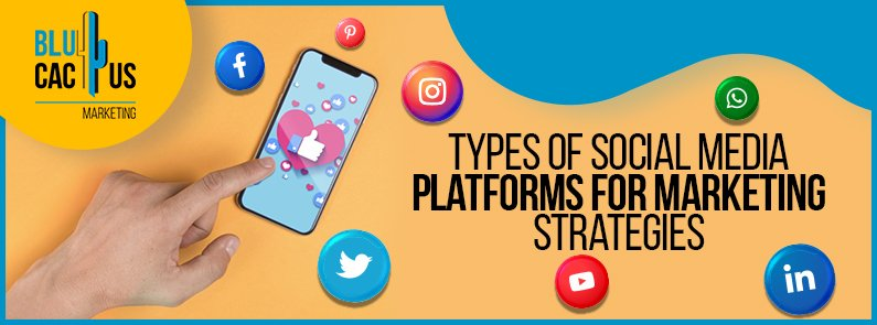 BluCactus - Types of social media - titulo