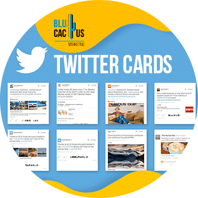 BluCactus -use twitter cards