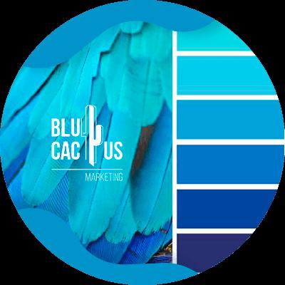 BluCactus - blue
