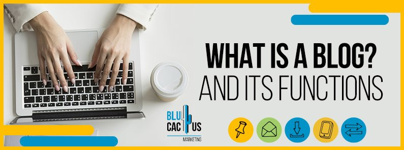 BluCactus - What is a blog - title