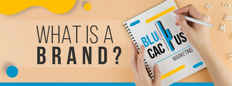 BluCactus - What is a brand - title