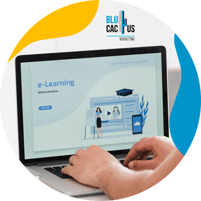 BluCactus - Landing page - professional person working in a computer