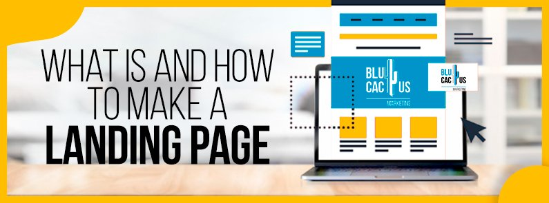 BluCactus - Landing page - title