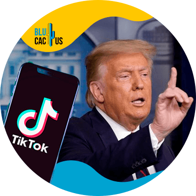 BluCactus - What will happen to TikTok? - donald trump
