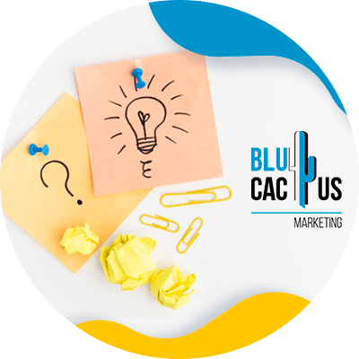 BluCactus - What is a brand - want to transmit
