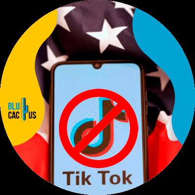 BluCactus - Instagram Reels vs TikTok - cellphone with an open app