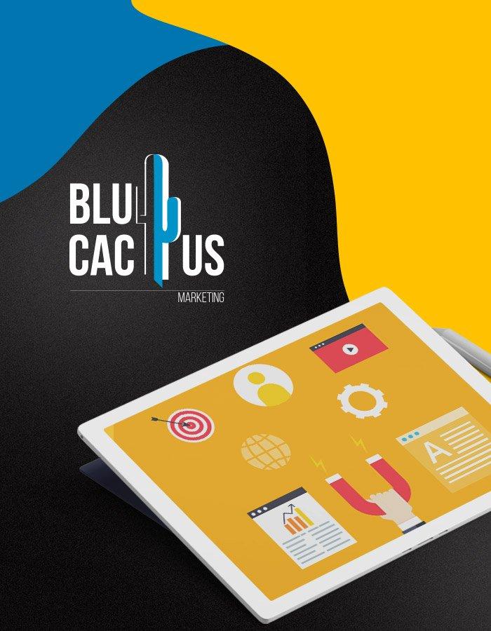BluCactus Explore our Inbound Marketing Agencys services