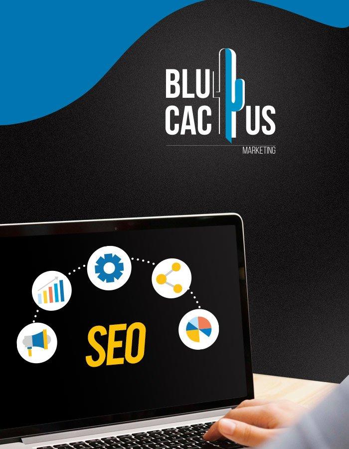BluCactus SEO services Inbound Marketing