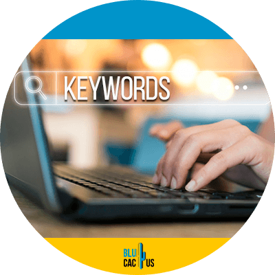 BluCactus -bounce rate - keywords