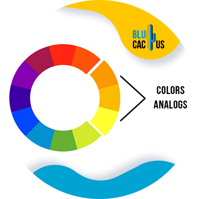 BluCactus - How to select the colors of the logo of a fashion company? - example of a color