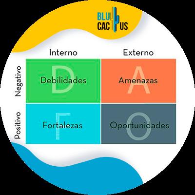BluCactus - idea