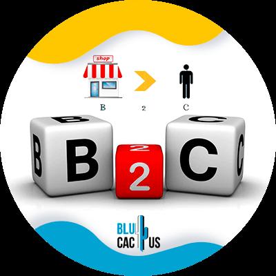 BluCactus - b2c