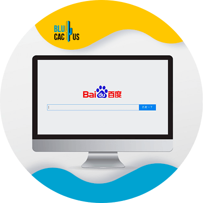BluCactus -33 alternative search engines - example of a search enginee