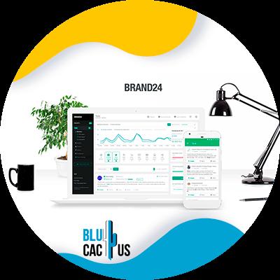 BluCactus - brand24