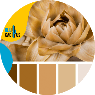 BluCactus - example of a color