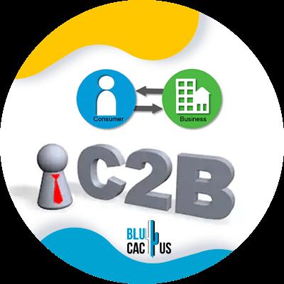 BluCactus - c2b