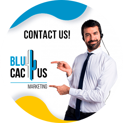 BluCactus - How to configure Google Analytic - contact us