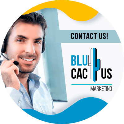 BluCactus - Corporate identity - contact us
