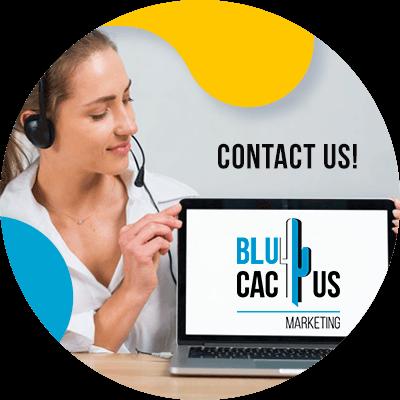 BluCactus - Google's monopoly - contact us
