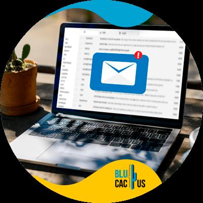 BluCactus - mailing list