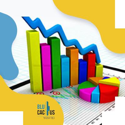 BluCactus - colorful graphics