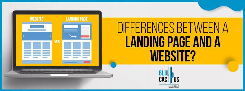 BluCactus - difference between a landing page and a website - title
