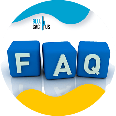 BluCactus - difference between a landing page and a website - faq