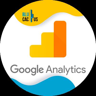 BluCactus - google analytics