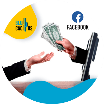 BluCactus - Google's monopoly - facebook