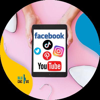 BluCactus - Social media marketing for fashion brands - information
