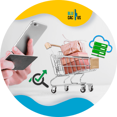 BluCactus - What is e-commerce? - example of e commerce