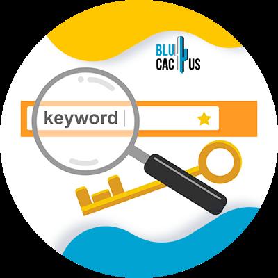 BluCactus - keywords