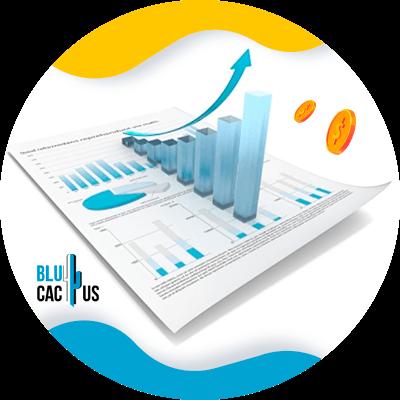 BluCactus - profit